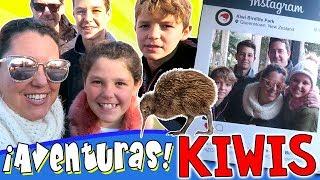 ¡¡KIWIS!! Los ANIMALES con Nombre de FRUTA y RARÍSIMOS! + Vlog NUEVA ZELANDA