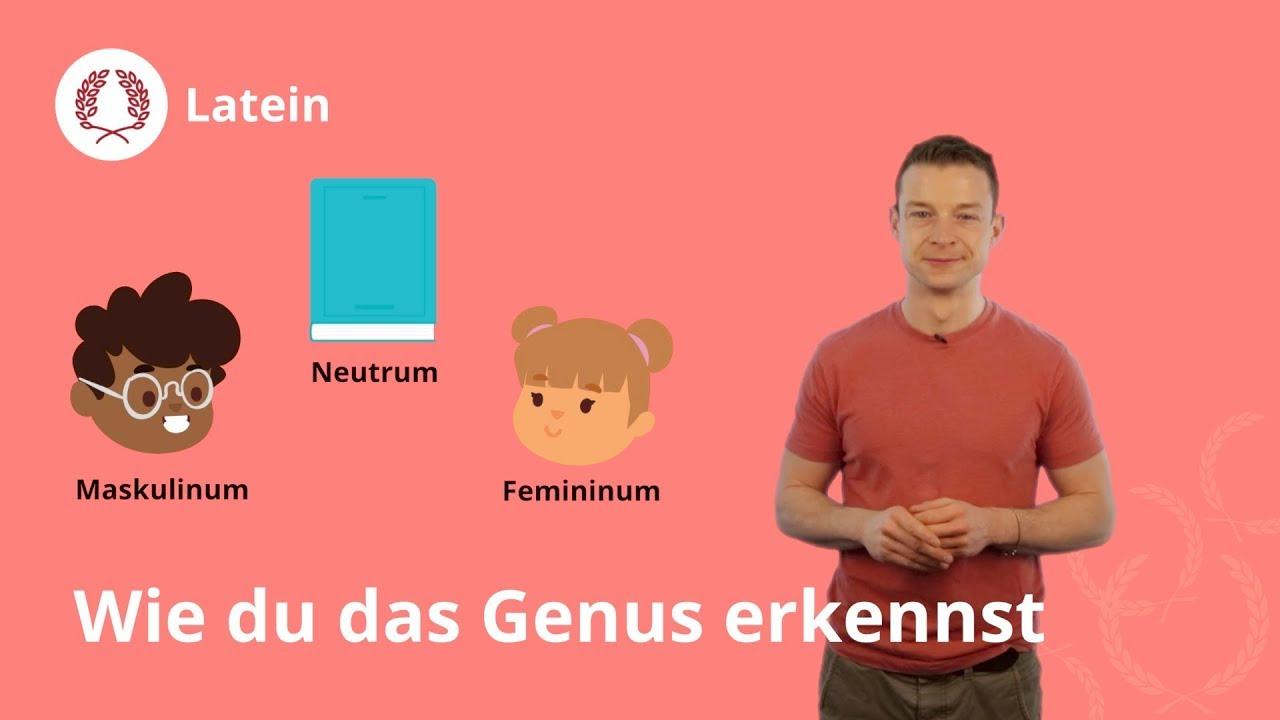 Femininum was bedeutet Duden