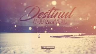 Anddy feat. Mexic - Destinul image