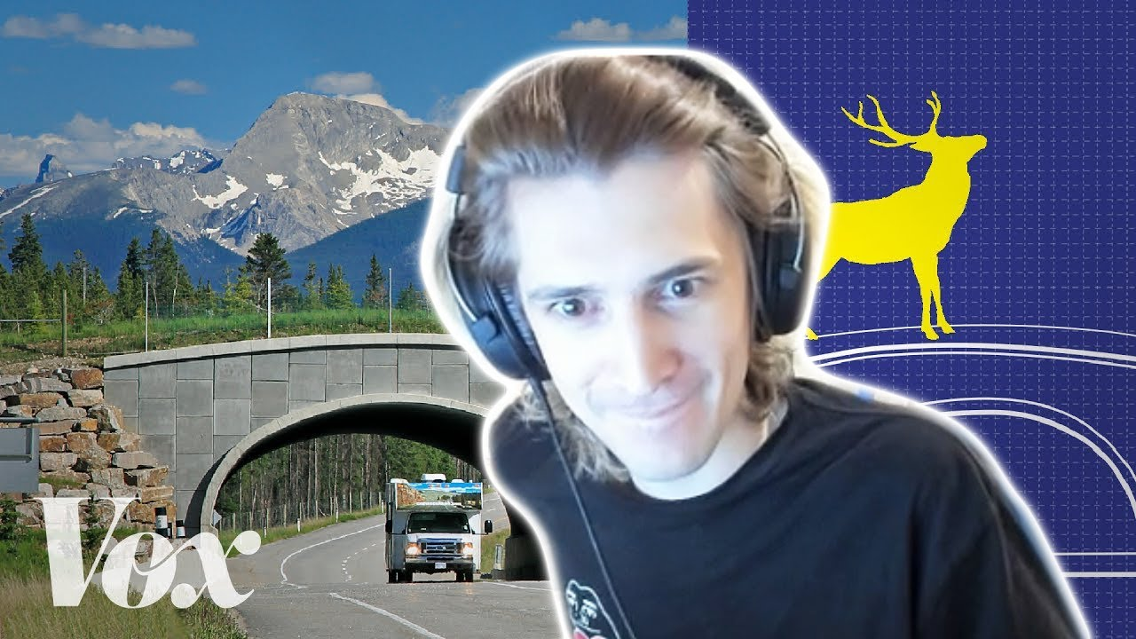 xQc Reacts to Wildlife crossings stop roadkill. Why aren't there more?