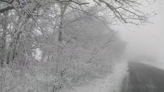 Иней/Frost [HD]