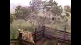 Chuva TRans Acreana Rio Branco Acre