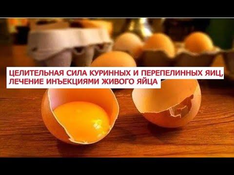 Целительная сила куринных и перепелинных яиц, лечение рака инъекциями живого яйца, 29 народных рецеп