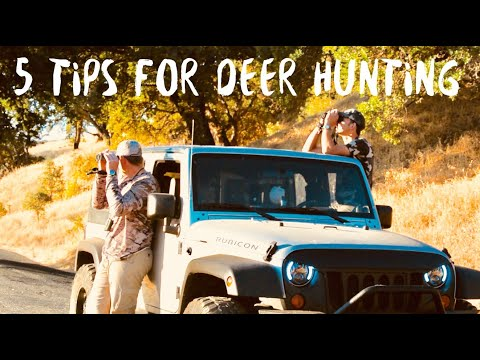 HOW TO HUNT DEER ON PUBLIC LAND || CALIFORNIA