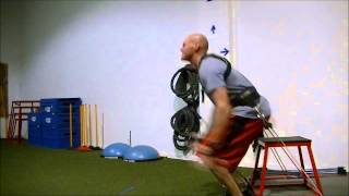Max Vertical Jump Training