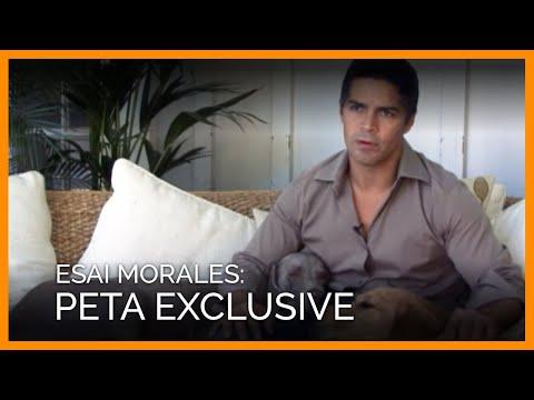 Esai Morales' PETA