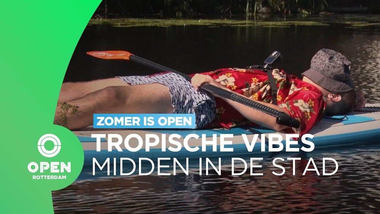Op zoek naar tropische plekjes in Rotterdam