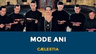 "CÆLESTIA - ""Mode Ani"""