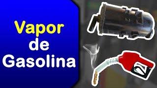 POLÊMICA   Vapor de Gasolina e Purga do Canister