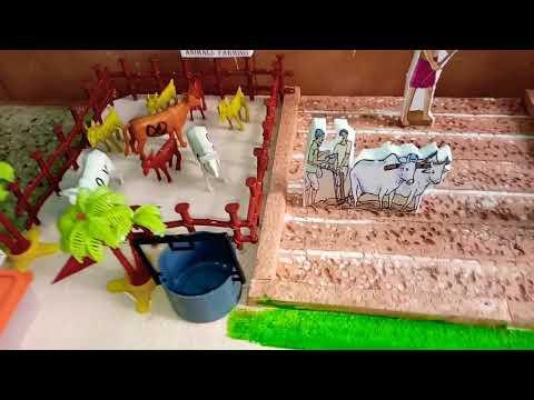 School Project - Organic Farming Model (www.schoolprojectcenter.in)
