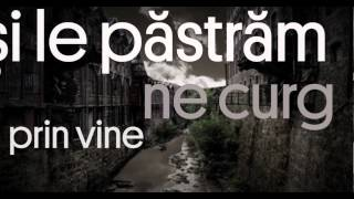 E.M.I.L. - Impreuna rezistam (Lyric Video) ft. Vlad Staricu