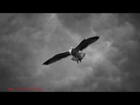 John Boswell  - Cloud Vision -  Piano -