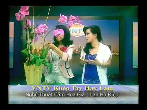 VNTV Flowers Arrangements - Bình Hoa Lan Hồ Điệp. Nghệ thuật cắm Hoa Lan