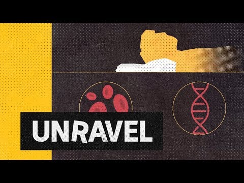 Can forensic evidence solve Mark Haines' mysterious death 30 years on? | Unravel True Crime