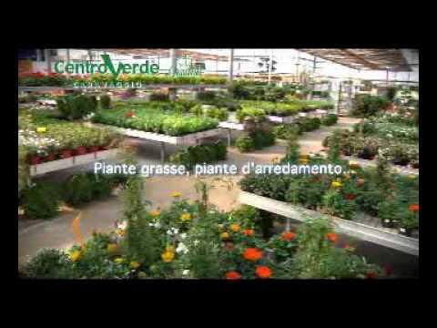 Fiori E Piante Da Giardino.Spot Centroverde 2010 Fiori E Piante Da Giardino Youtube