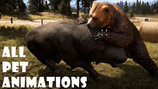 Far Cry 5 - All Animals (Revive & Pet Animations) (PC HD) [1080p60FPS]