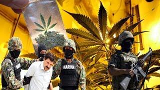 Das Ende der Drogenkartelle -Der Kampf der Polizei gegen Drogen [Doku 2016] (HD)