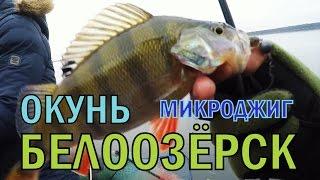 Рыбалка в Беларуси. Окунь на микроджиг Белоозёрск оз. Белое. ПЕРЕЗАЛИЛ\Fishing for perch