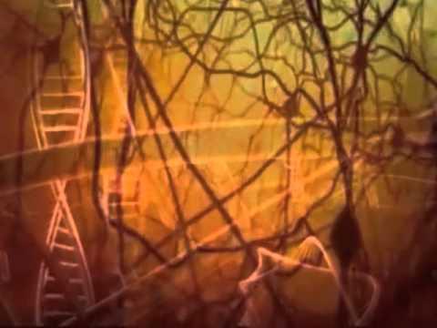 The Evil Spirit Detachment Meditation