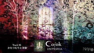 Cojok 3rd Album「UNTRSHIA」(アントルシア) 2014年3月12日 OTOTOYよ...