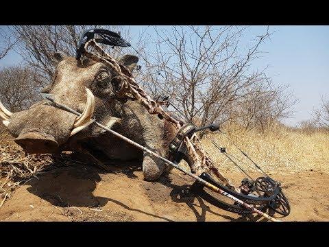 bowhunting safaris south africa movie  bowhuntingsa