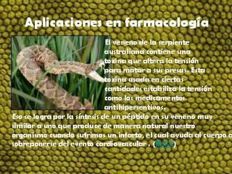 El veneno de la serpiente y sus propiedades farmacéuticas