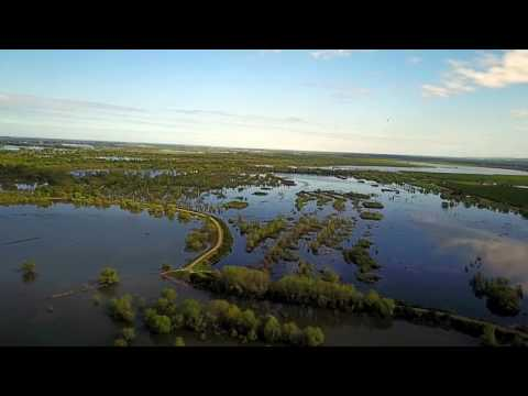 Flooded San Joaquin River at Mapes Ranch Vernalis Ca... DJI Mavic Pro Drone
