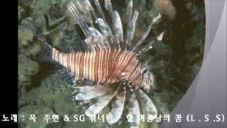 옥  주현 & SG 워너비 - 한 여름날에 꿈