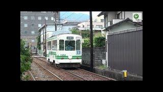 【専用軌道】熊本市電1350形(1351) 洗馬橋電停到着~出発 Kumamoto City Tram