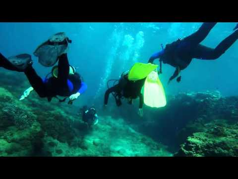 Scuba Diving Bundaberg 2015