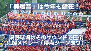 2016年も市立習志野「美爆音」は健在 県野球場はそのサウンドで圧倒(得点シーンあり) thumbnail