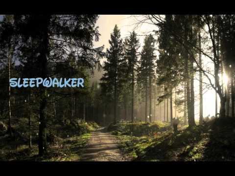Illenium - Sleepwalker (ft. Joni Fatora) [Lyrics Video]