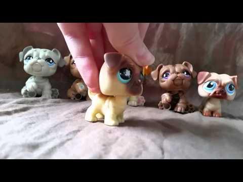 "LPS: ""Zakręceni"" #43 Littlest Pet Shop !"