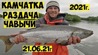 Много ЧАВЫЧИ на Камчатке Рыбалка на чавычу Королевский лосось на реке Большая King salmon fishing