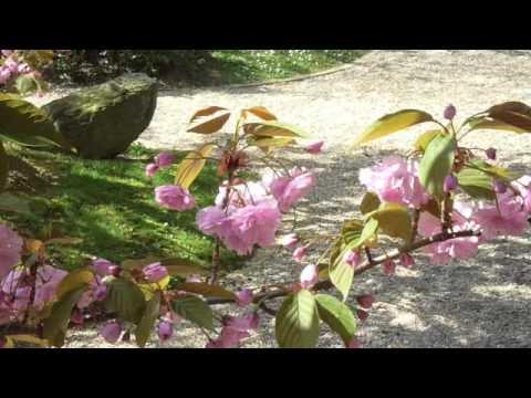 UNESCO Noguchi Japanese Garden Paris