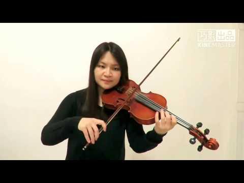 Kygo, Selena Gomez - It Ain't Me(Violin Cover)