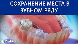 Молочные зубы и сохранение места в зубном ряду ©