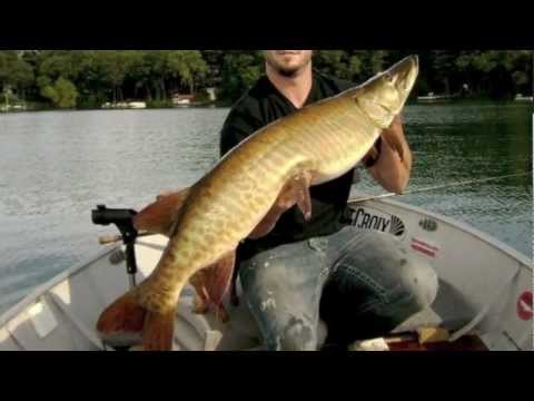 Muskie fishing chaos tackle predator nation youtube for Musky fishing reels