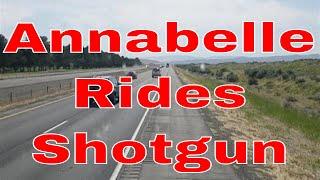 Annabelle Rides Shotgun With Red Viking Trucker | CDL Truck Driver Adventures
