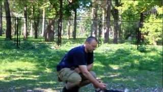 Дрессировка собак ОКД учим щенка Бигля команде место