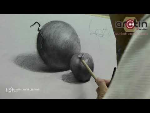 [Arctin] Dạy Vẽ Tĩnh Vật - Tả Chất Nhanh Bằng Chì Than