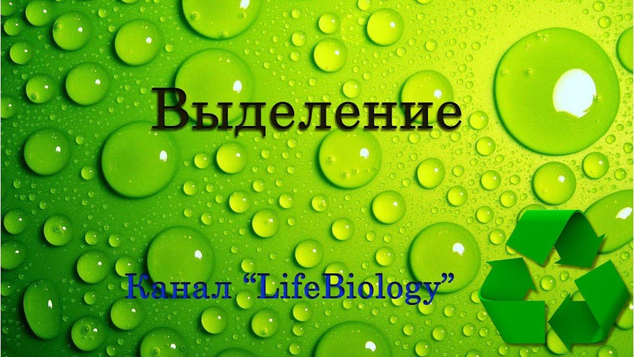 Скачать сонин биология 9 класс