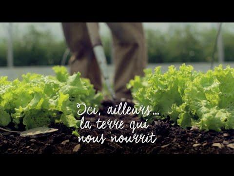 Ici, ailleurs... la terre qui nous nourrit