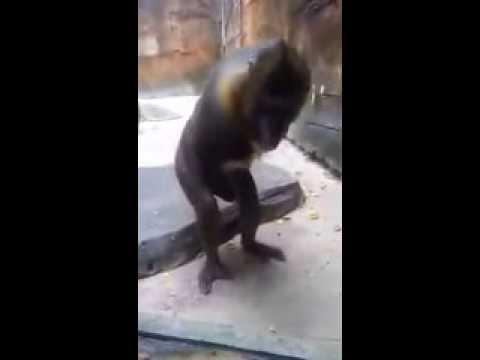 Japanese Body MassageKaynak: YouTube · Süre: 10 dakika27 saniye