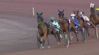 Vidéo de la course PMU PRIX DES PHLOX (GR A)