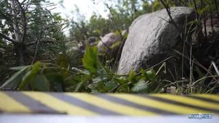 Полевые испытания гусеничного шасси для робота-картографа в лесу.