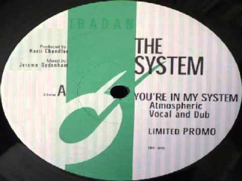 The System  ‎-- You're In My System (Kerri Chandler Remix)