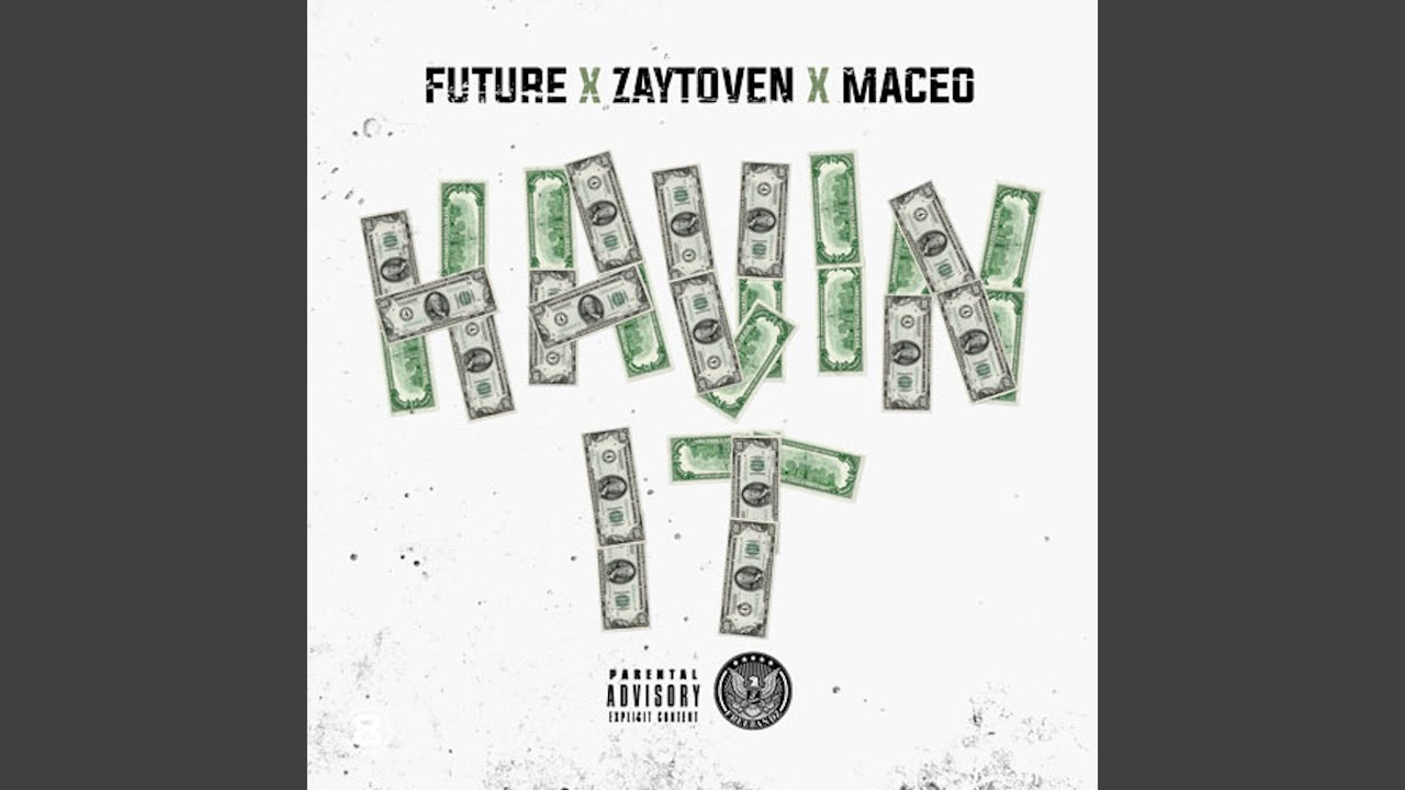 Download Havin It