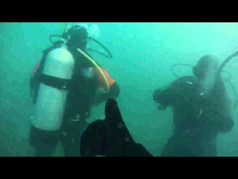 DMT Advanced Open Water  Dive 2 - 20130518