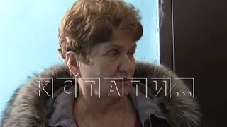 Жестокая дрессировка - в Автозаводском районе жительница выбросила 7 котят из окна
